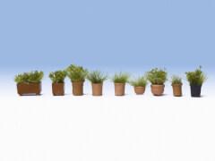 H0 Grünpflanzen in Blumentöpfen
